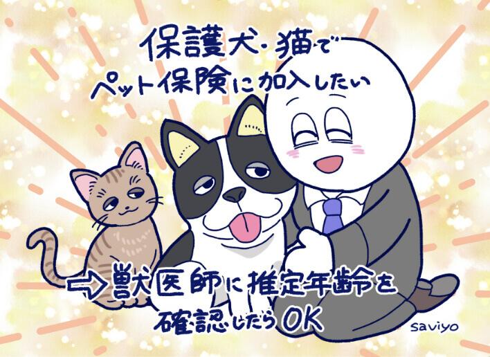 保護犬・猫でペット保険に加入したい→獣医師に推定年齢を確認したらOK
