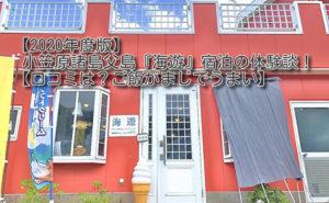 【2020年】父島『海遊』宿泊の体験談【口コミは?ご飯がうまい】